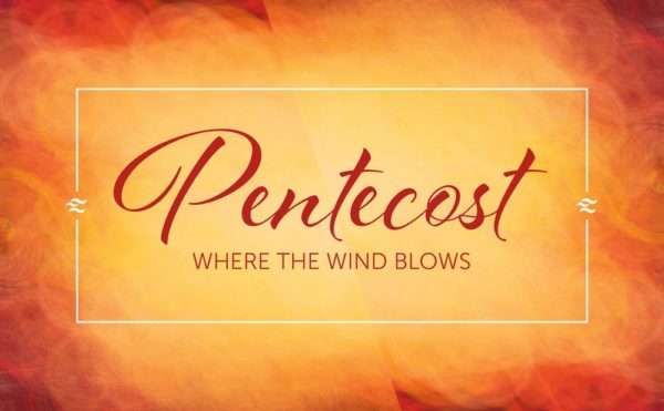 Where the Wind Blows Image