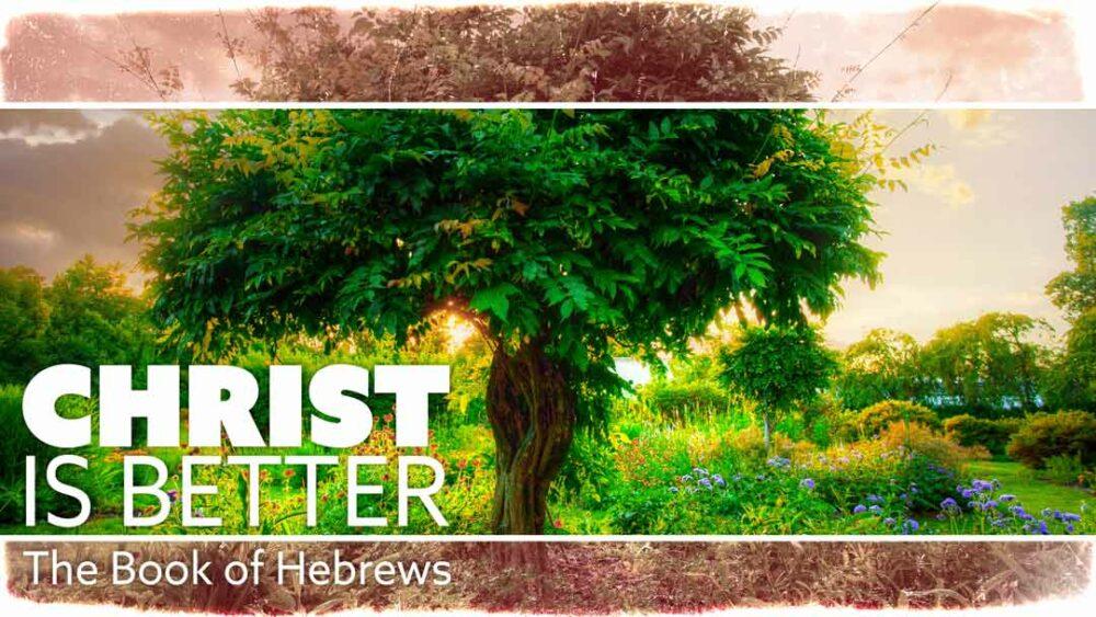 Christ is Better